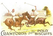 Crawfords Polo Advert