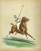A Back Hit (set of 4) POLO TEAM PRIZE OPTION - Image 1