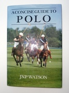 A Concise Guide To Polo - Image 1