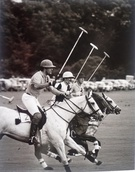Patrick Churchward, Mark Vestey, Paul Withers at Cowdray Park - Image 1