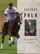 Visions of Polo - Image 1