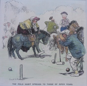 Punch Cartoon - The Polo Habit Spreads to Those of Riper Years
